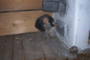 23 Valmez Muzeum strašidiel