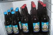 37 Pivo
