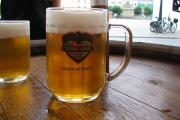 41 Pivo