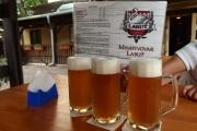 47 Litoměřice pivo
