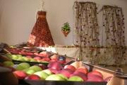 jablkove-hody-05