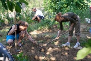 komunitna-zahrada