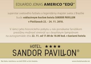 w-sandor-pavillon-edu-plagat
