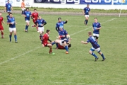 Rugby (105)