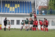 Rugby (11)