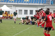Rugby (15)