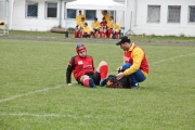 Rugby (17)