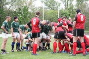 Rugby (18)
