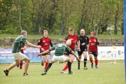 Rugby (21)