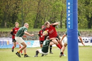 Rugby (22)