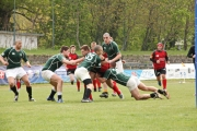 Rugby (23)