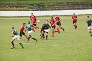 Rugby (24)