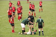 Rugby (29)
