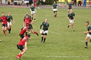 Rugby (30)
