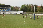 Rugby (31)