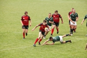 Rugby (34)