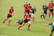 Rugby (35)