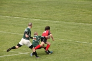 Rugby (36)