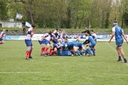 Rugby (49)
