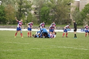 Rugby (50)