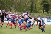 Rugby (55)