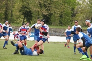 Rugby (56)