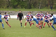 Rugby (63)