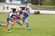 Rugby (66)