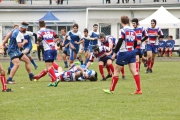 Rugby (68)