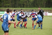 Rugby (72)