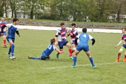 Rugby (75)