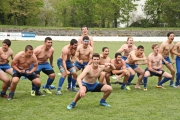 Rugby (85)