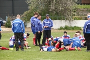 Rugby (88)
