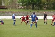 Rugby (95)