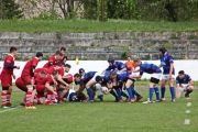 Rugby (98)