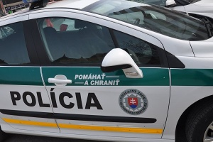 policia pomahat a chranit 300