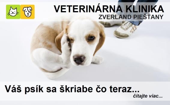 Banner_skriabanie