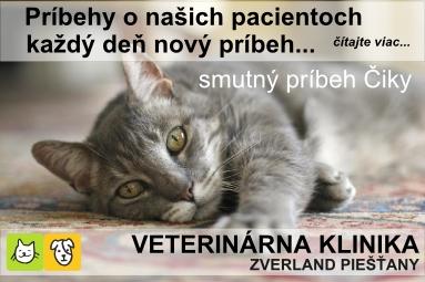 PN-KY_banner_Ciky