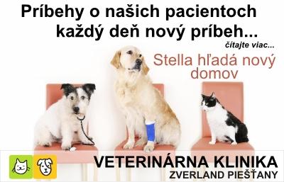 PN-KY_banner_Stella 04032014