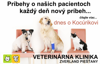PN-KY_banner_kocurik400x256