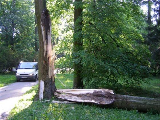 strom1