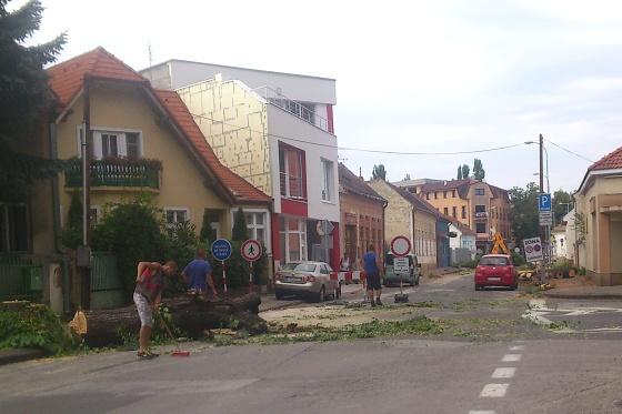 mestianska1