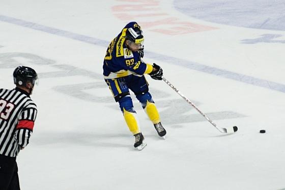 hokej havrani