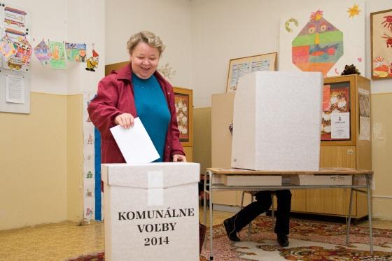 volby komunalne 2014 2