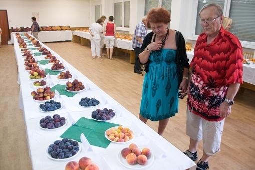 ovocie (1)