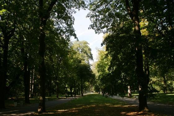 park jesen