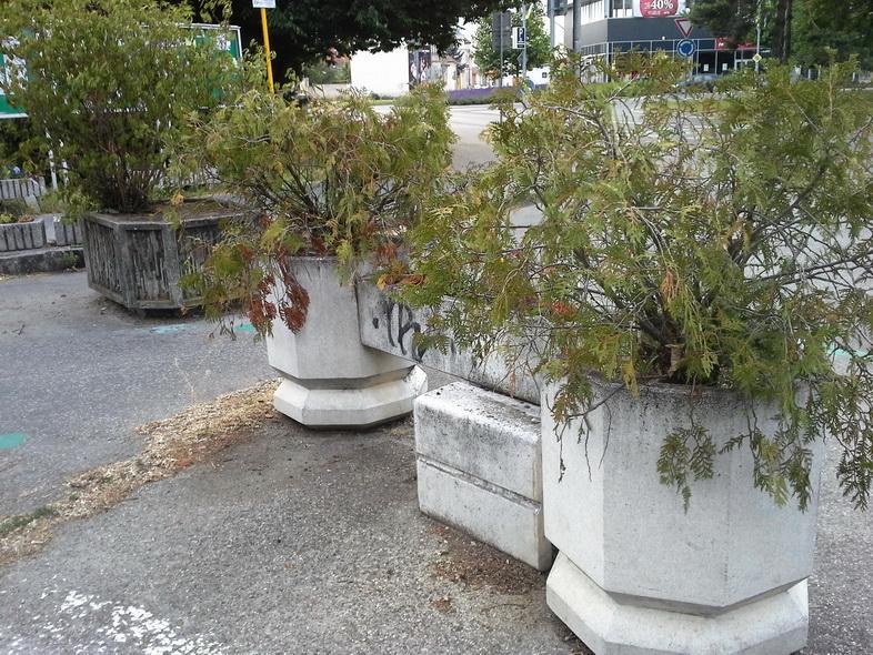 zanedbané a neriešené kvetinové nádoby_resize