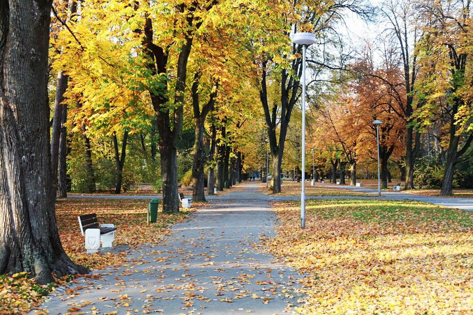 Jesen (3)