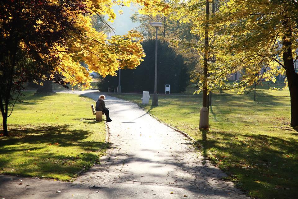 Jesen (5)