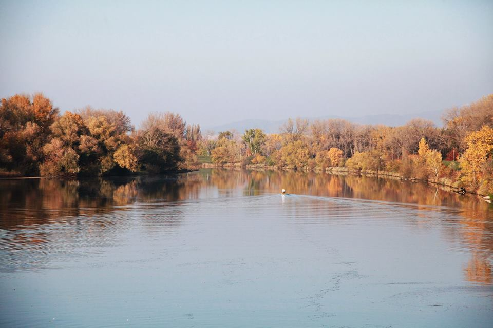 Jesen (9)
